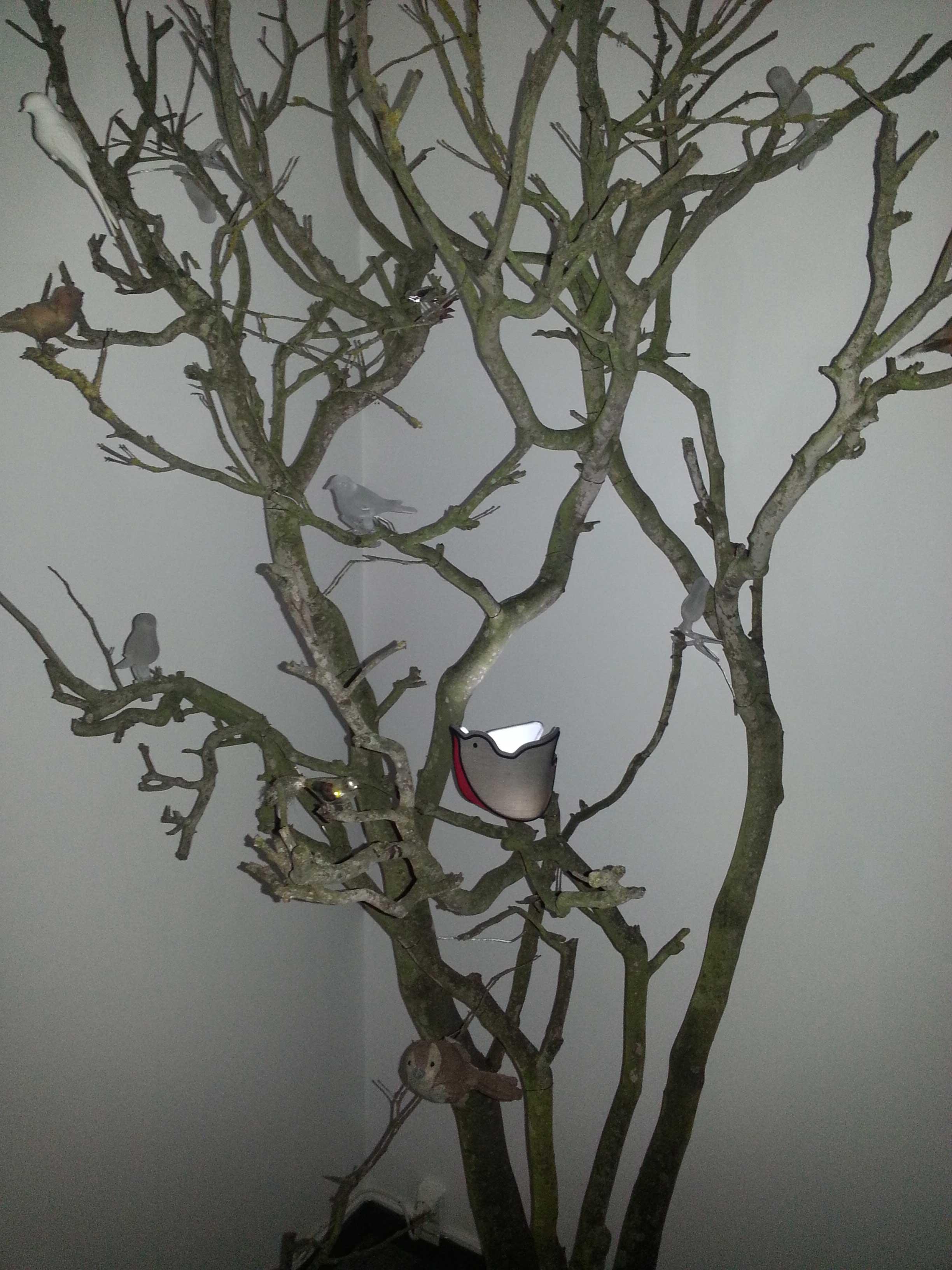 L'oiseau-dans-son-arbre
