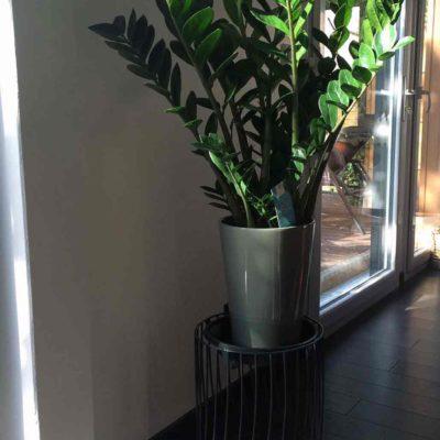 Porte plante en fil métallique noir mat